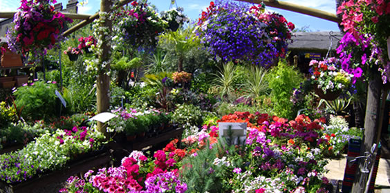 Verwarming voor tuincentrum